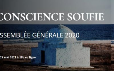 Rapport Moral Conscience Soufie 2020